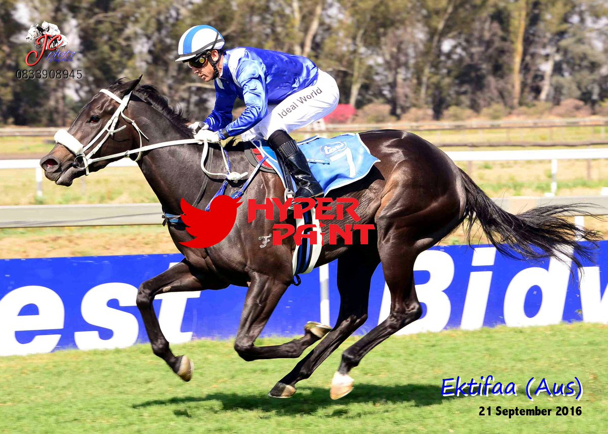 $600,000 More Than Ready filly wins in South Africa