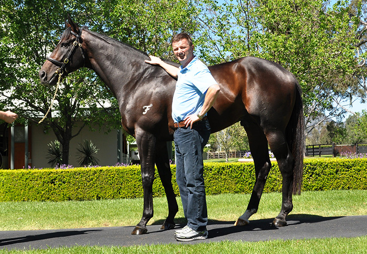 Champion Juvenile Vancouver to shuttle to Coolmore America
